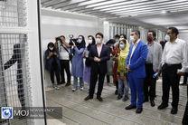 خبرنگاران از گنجینه مرمت شده موزه هنرهای معاصر بازدید کردند/شرط افزایش آثار گنجینه