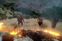 ۴۳ بالگرد در کشور برای مهار آتش سوزی جنگل ها مستقر شد