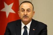 ترکیه از موضع اتحادیه عرب در تقبیح معامله قرن حمایت می کند