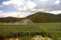 ۸۰ درصد از اراضی کشاورزی کشور فاقد سند مالکیت هستند