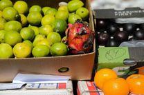 توقیف 4 تن میوه قاچاق در یزد