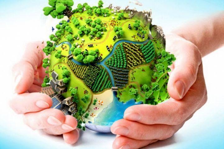 طرح یک ساعت با محیطبان در شهرستان پلدختر برگزار شد