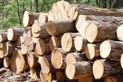 جلوگیری از قاچاق چوب در رودان با همت نیروهای یگان حفاظت