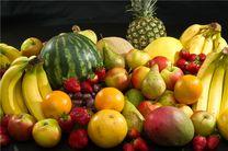 عملیات بزرگ در شمال تهران/میوههای قاچاق به دام افتادند