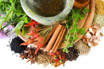 راه اندازی 20 سلامتکده طب سنتی در کشور تا نیمه دوم سال96