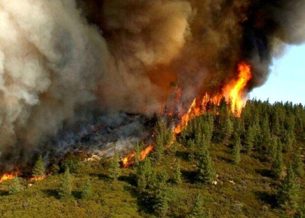 آمادگی مسئولین و مردم در برابر آتش سوزی مراتع برنامه ریزی شود
