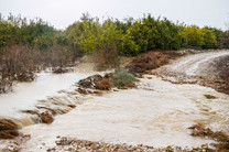 آخوندی مشاورش را به مناطق سیلزده فرستاد/ خبری از حضور وزیر نیست