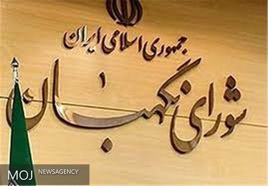 برگزاری الکترونیکی انتخابات آینده در دستور کار شورای نگهبان است