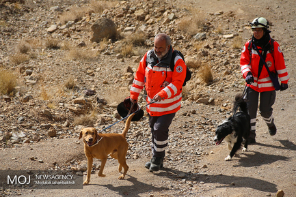 مانور مشترک سگهای آنست هلال احمر ایران و صلیب سرخ آلمان
