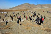 ۳۵ هنرمند نقاش به بیابانهای سمنان میروند