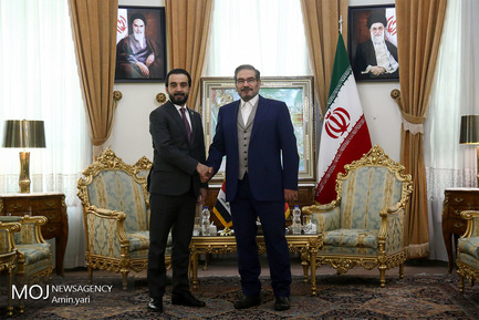 دیدار رییس مجلس عراق با علی شمخانی