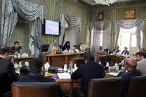 بررسی طرح های پیشنهادی پیرامون فضای سبز پیاده راه فرهنگی/احداث یادمان شهدای گمنام در بوستان ملت