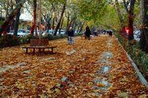 جمع آوری با تاخیر در برگهای پاییزی ناژوان و چهارباغ اصفهان