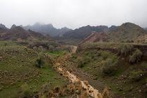 حفاظت مشارکتی از مراتع هرمزگان به مرز دو میلیون هکتار رسید