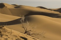 کویر مرنجاب از نقاط کلیدی و ممتاز کویر مرکزی ایران است