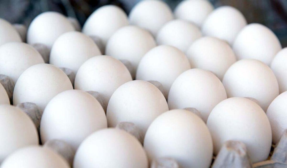 کشف 3 تن تخم مرغ تاریخ گذشته در قم
