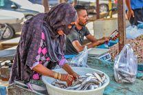 دستفروشان ماهی در بندرعباس جمع آوری می شوند