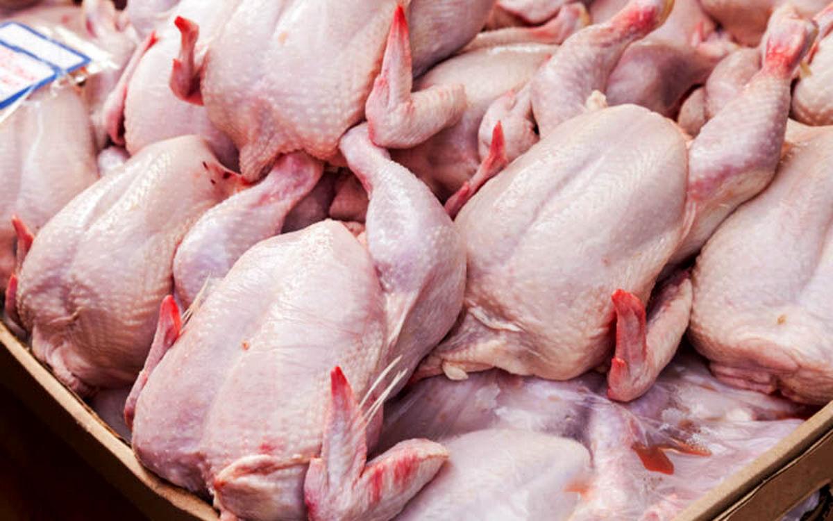 قیمت مرغ در تهران به ۲۶ هزار تومان رسید/ توزیع نامناسب در سطح کشور علت افزایش قیمت است