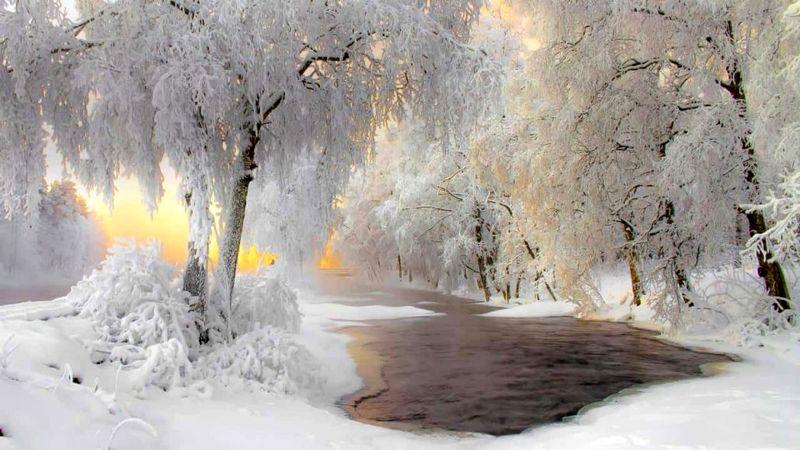 فنلاند، سرزمین جنگل و یخ