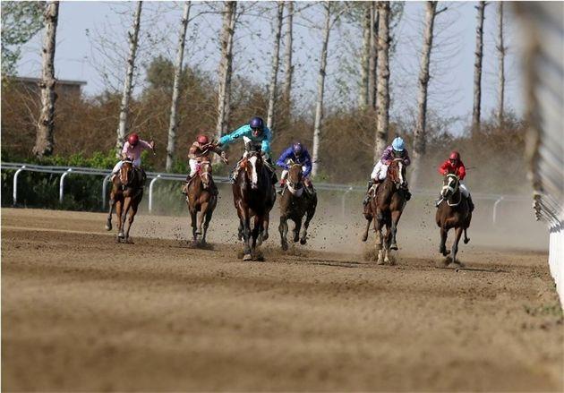 برگزاری هفته دوازدهم مسابقات اسبدوانی کورس پاییزه کشور در گنبدکاووس