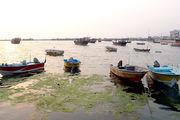شرایط دریا جهت ترددهای دریایی و امور صیادی مساعد است