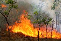 آتشزدن مازاد محصولات کشاورزی خلاف قانون است/ شماره 1504 برای اطلاع آتشسوزی به منابعطبیعی