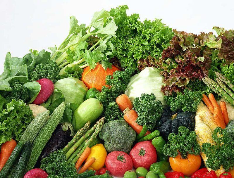 30 تا35 درصد محصولات کشاورزی ایران تبدیل به ضایعات میشود