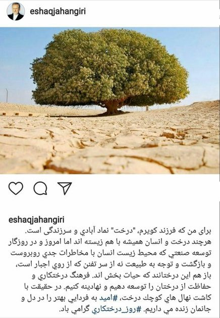 فرهنگ درختکاری و حفاظت از درختان را توسعه دهیم