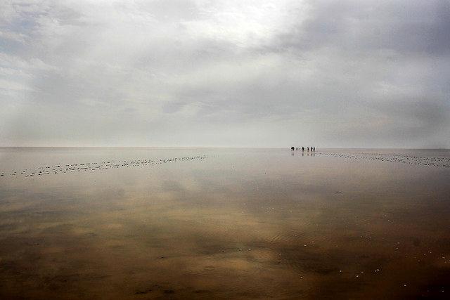 ورود آب به تالاب جازموریان پس از 20 سال