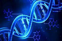 سرمایهگذاری مایکروسافت روی پردازشگر مبتنی بر DNA