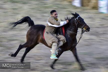 دومین+جشنواره+ملی+اسب+اصیل+کرد+