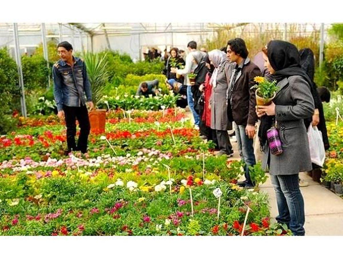 احداث بازارچه دائمی گل و گیاه در محمودآباد