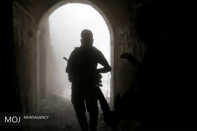 حزب الله در خط مقدم نبرد با داعش است