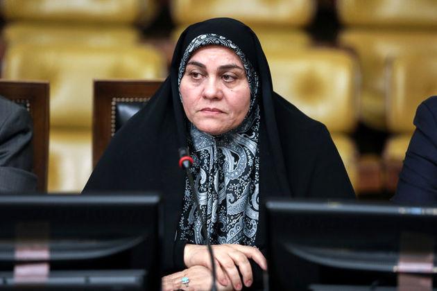 سعیدی: دولت باید در جذب سرمایهگذاری خارجی سرعت بیشتری از خود نشان دهد