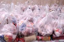 بسته های حمایتی در زاچ و داربست توزیع شد