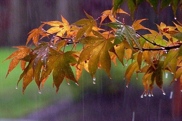 نخستین سامانه بارشی پاییزی در راه مازندران
