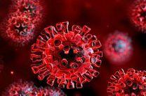 آسیب کروناویروس به تارهای صوتی