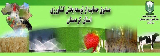 صندوق حمایت ازبخش کشاورزی شهرستان مریوان به زودی راه اندازی می شود