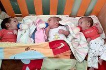 پرداخت 530 میلیون تومان کمک بلاعوض کمیته امداد به 12 خانواده صاحب فرزند سه قلو در اصفهان