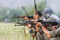 کشته شدن 29 عضو پ.ک.ک در عملیات ارتش ترکیه