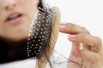 تاثیر شامپو ضد ریزش مو در تقویت و ریزش موی سر/ هنگام خرید شامپو به چه نکاتی توجه کنیم؟