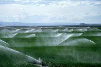 رتبه دوم ایلام در قراردادهای کشاورزی کشور