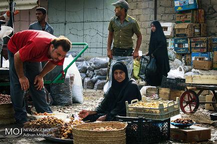زنان+سرپرست+خانوار+خوزستانی