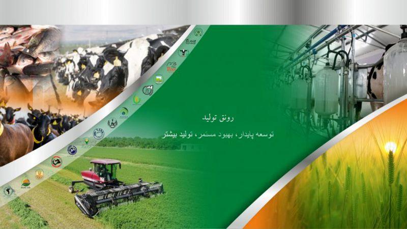 اعطای تسهیلات بانکی به متقاضیان بخش کشاورزی