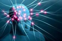 افزایش تحرک با دستکاری سلولهای عصبی