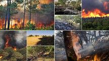 ۷۰ درصد حریق های حادث شده در جنگل ها سهوی است/برای نابودی منابع طبیعی از یکدیگر سبقت گرفته ایم