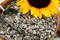 یک محموله  قاچاق تخمه آفتابگردان در اصفهان کشف و توقیف شد