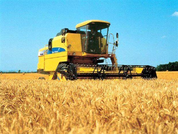 برداشت 20 هزار تن گندم از مزارع شهرستان فریدونشهر