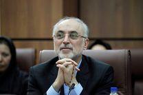 رئیس سازمان انرژی اتمی به «چرخ» میرود