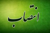 علیرضا کاظمی معاون پرورشی و فرهنگی شد